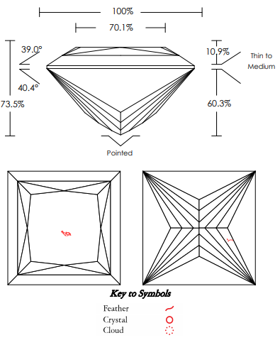 AGS Diamond Inclusion