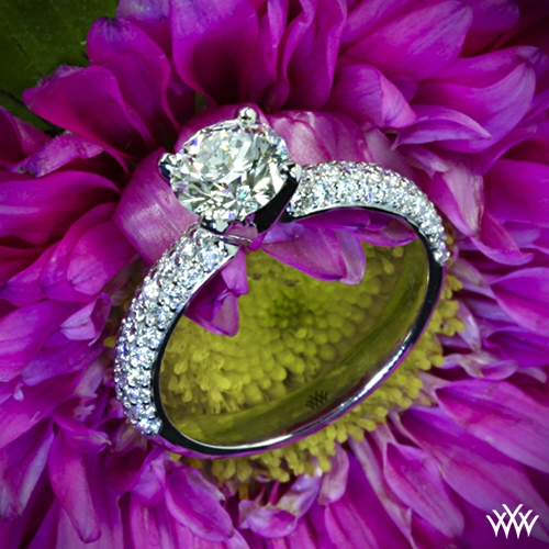 rounded-pave-diamond-engagement-ring-in-18k-white-gold_gi_3443_g